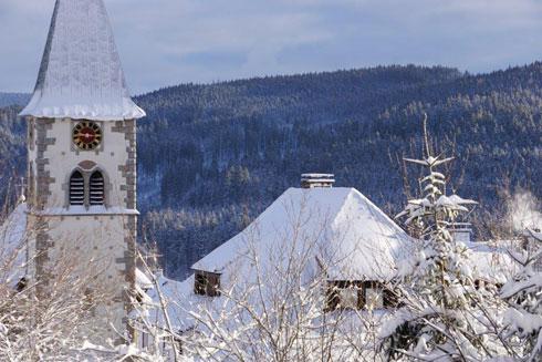 נהנים מאוויר היער ומהשלג (צילום: צביקה בורג)
