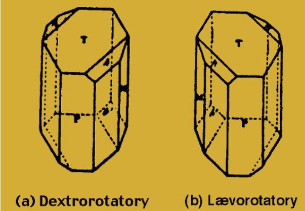 גביש אחד, שתי צורות שהן תמונת מראה זו של זו. הצורה הימנית והשמאלית של גבישי חומצת היין (איור: לואי פסטר)
