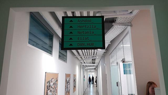 סטודנטים במכללה שהקים ערן לסר בקייב. לכל חדר שם של עיר ישראלית אחרת (צילום: אליסף קוסמן)