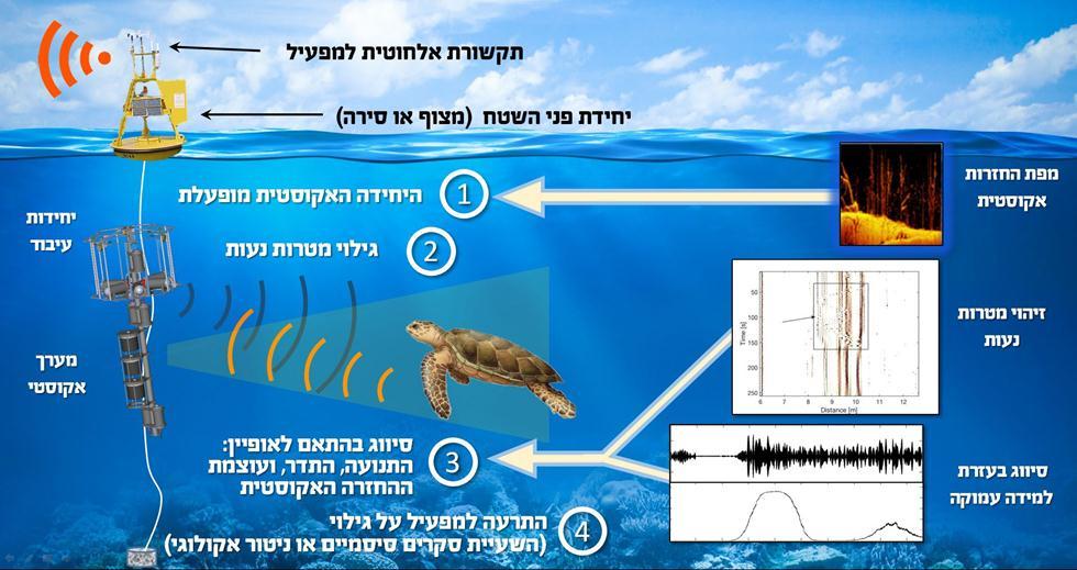 כיצד המערכת פועלת? (צילום: רועי דיאמנט, אוניברסיטת חיפה)