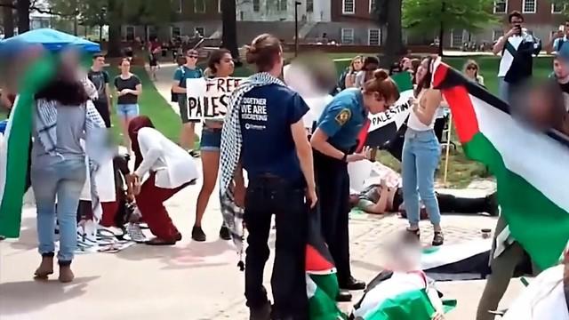 BDS (צילום: רן דיקשטיין)