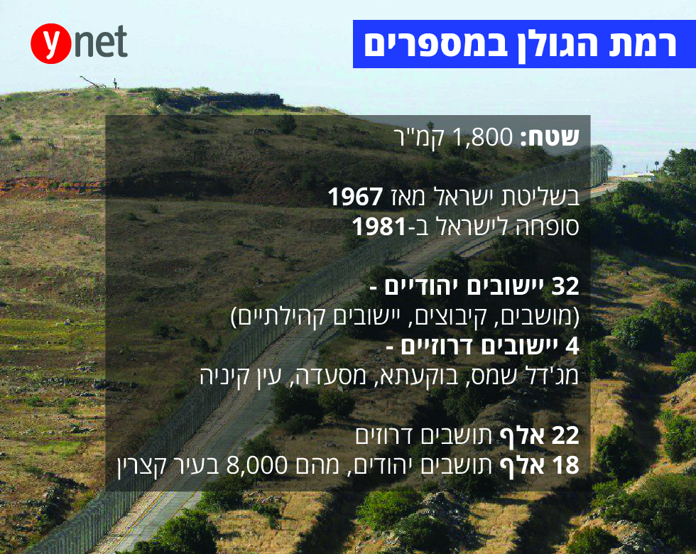 רמת הגולן במספרים (צילום: AFP)