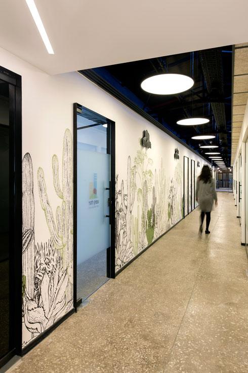 ומסדרון הקקטוסים, המוביל ממנו אל המשרדים הסגורים (צילום: מושי גיטליס)