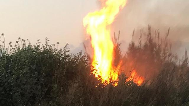 Un incendie sur des terres agricoles israéliennes déclenché par un engin incendiaire aérien depuis Gaza