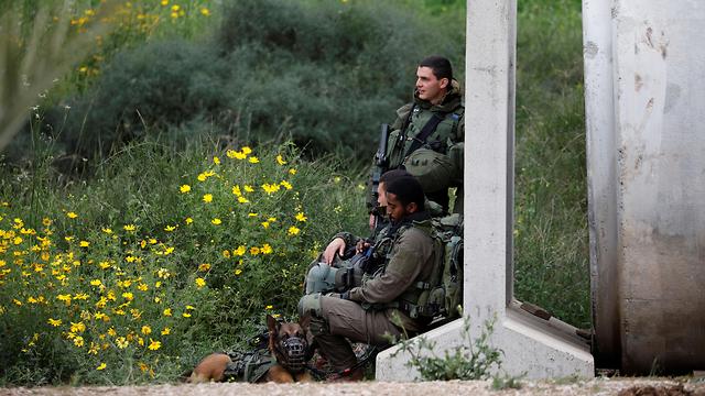 חיילים בגבול רצועת עזה (צילום: רויטרס)