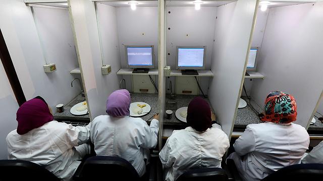 מצרים מבחן טעימה אורז מדענים סובסידיה (צילום: רויטרס)
