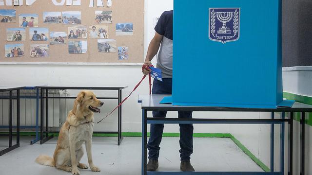 מצביעים בירושלים (צילום: אוהד צויגנברג)