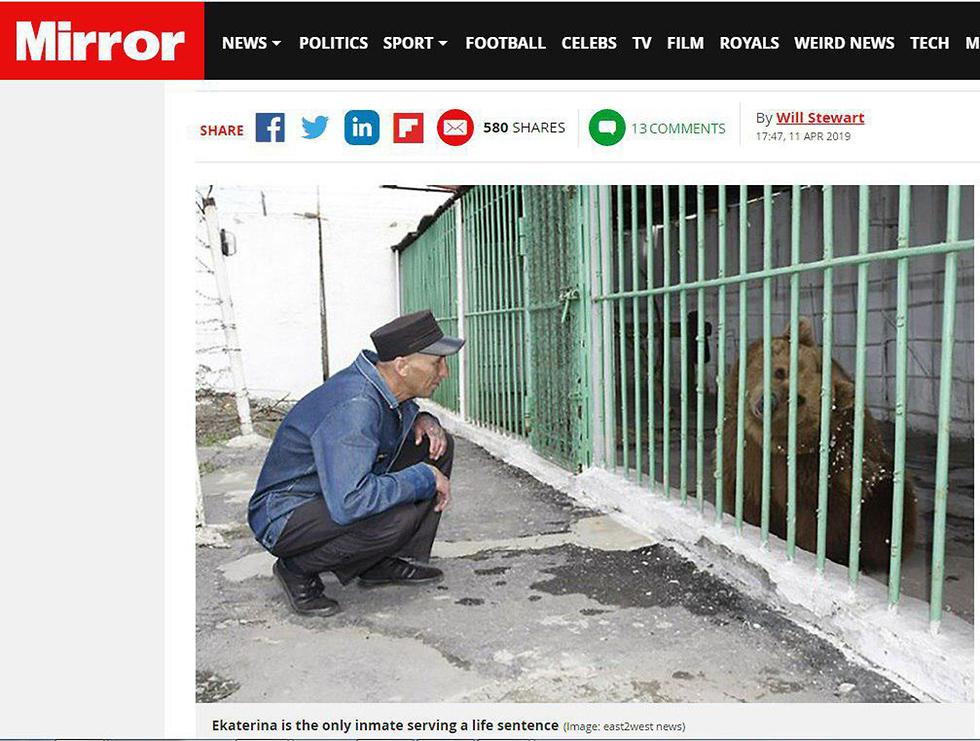 דובה חומה כלא קזחסט ()