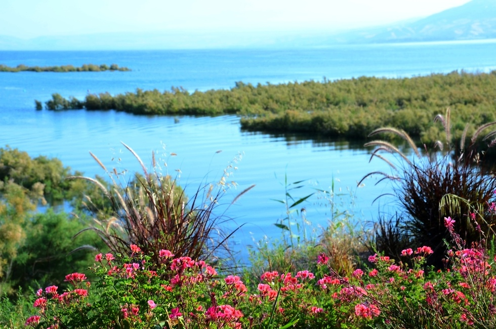 Route leading to the Sea of Galilee (Photo: Sea of Galilee officials)