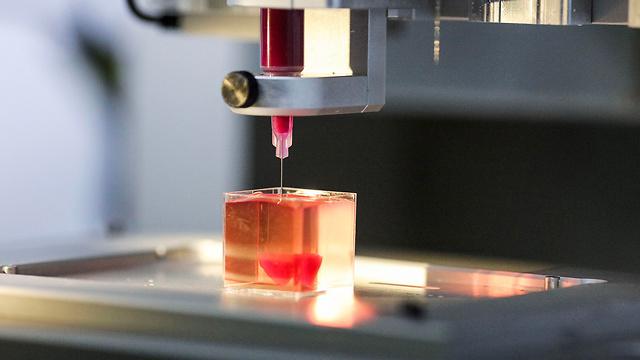 הדפסת לב מרקמה אנושית (צילום: EPA)