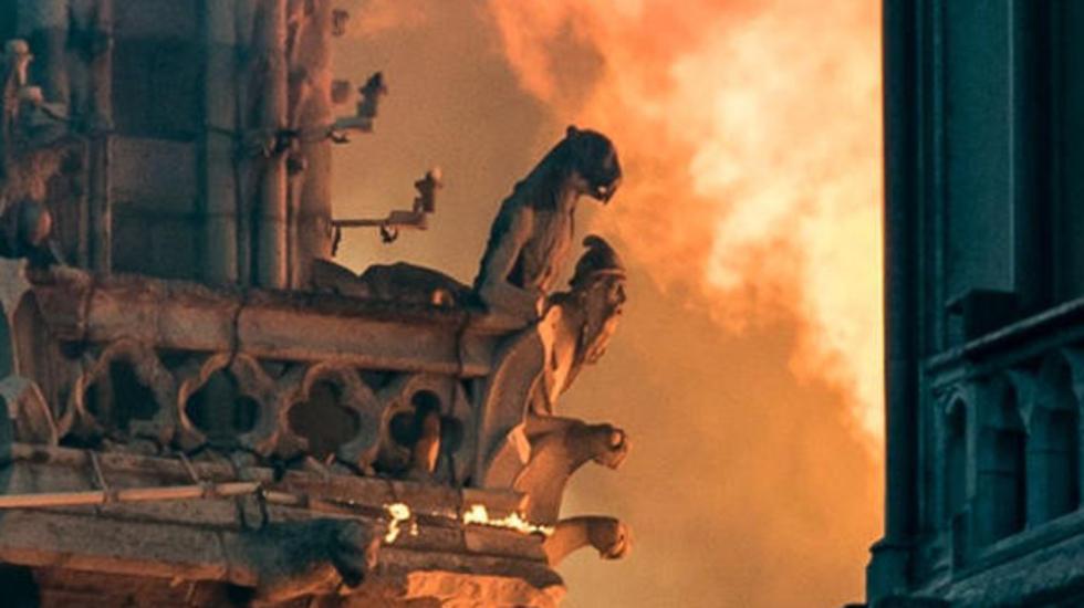 Химеры собора Парижской Богоматери. Фото: AFP