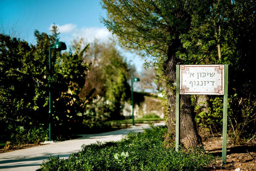 ''שכונת דיזנגוף'' בשדה נחמיה בנויה מרכבות של דירות חדר קיבוציות. יומיים לאחר שעמדי ביקרה בה - התפנתה בה דירה להשכרה, והיא קפצה על ההזדמנות (צילום: תומר בן שמחון)