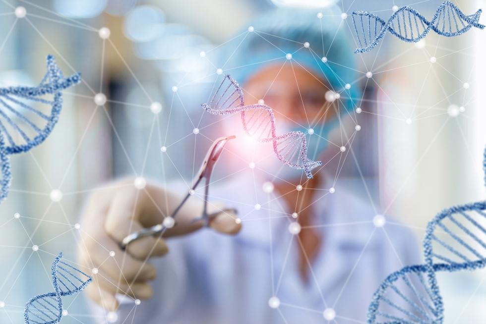 גנטיקה (אילוסטרציה) (צילום: shutterstock)