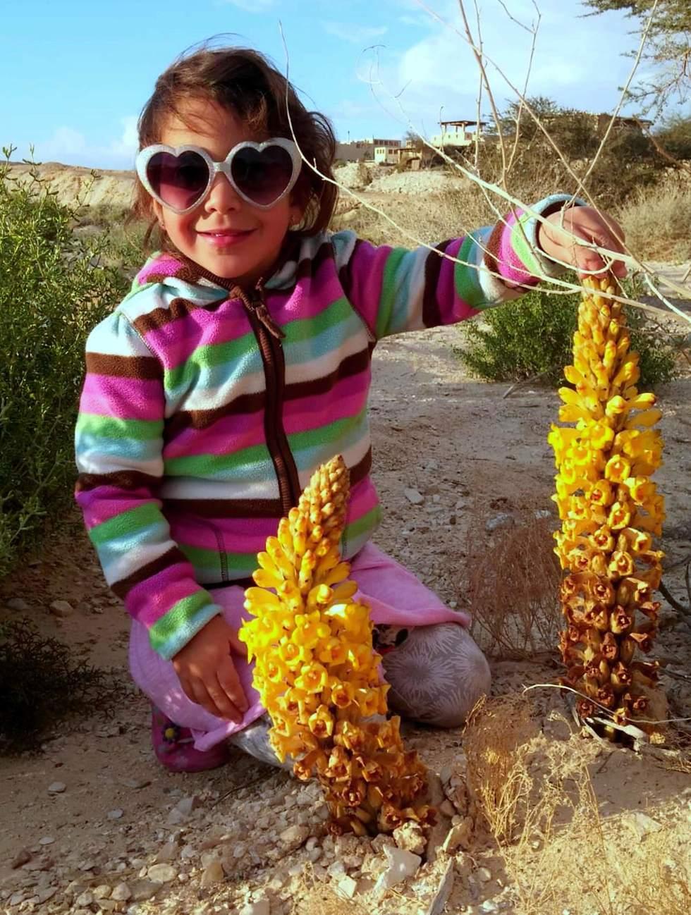 מתרשמים מפריחת יחנוק המדבר ליד המושב צופר (צילום: הילה אלבז)