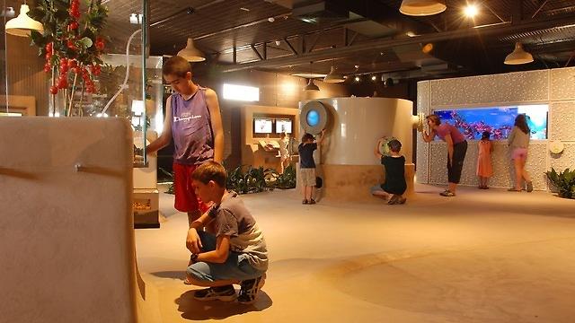 המוזיאון במרכז ויידור (צילום: באדיבות תיירות ערבה תיכונה וצפונית)