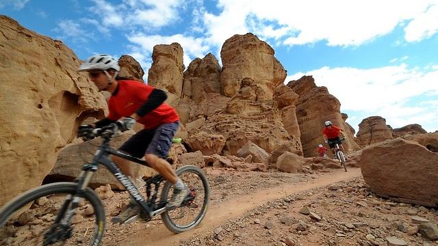 רכיבה על אופניים בפארק תמנע (צילום: ארן דולב)