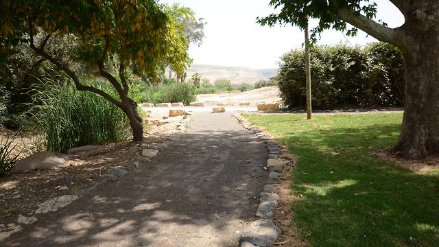 עמק החולה אגם החולה (צילום:באדיבות רשות מקרקעי ישראל)