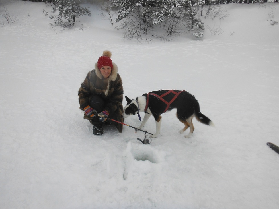 Хермон в снегу. Фото: Ишай Хен