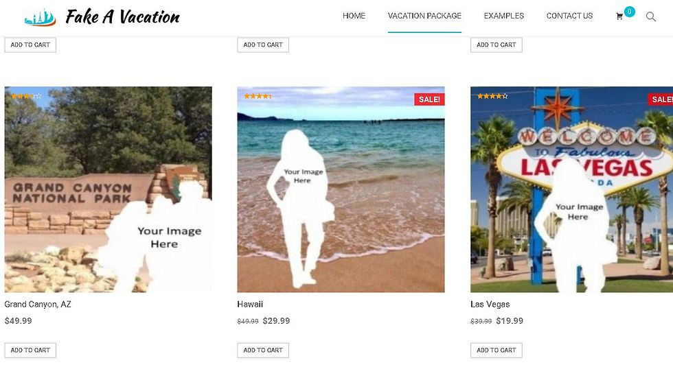זייף חופשה fake a vacation (מתוך fakeavacation.com)