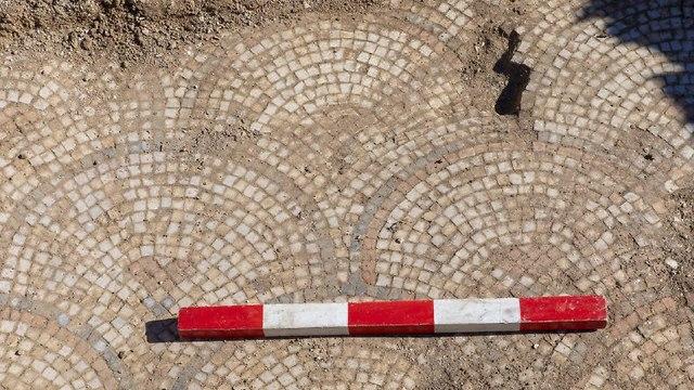 רצפת פסיפס במצד (צילום: מ' איזנברג. משלחת חפירות סוסיתא, אוניברסיטת חיפה)