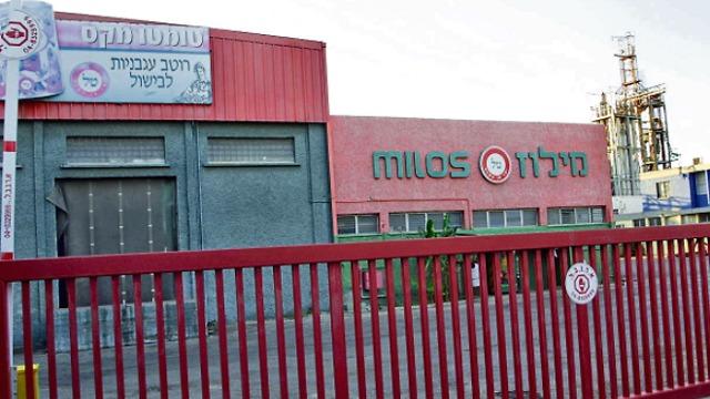 מפעל מילוז בנהריה (צילום: גיל נחושתן)