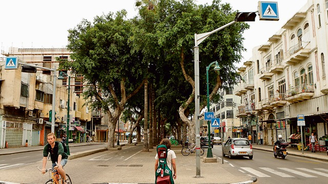 Jerusalem Boulevard in Jaffa before renovations began (Photo: Amit Shaul) (Photo: Amit Sha'al)