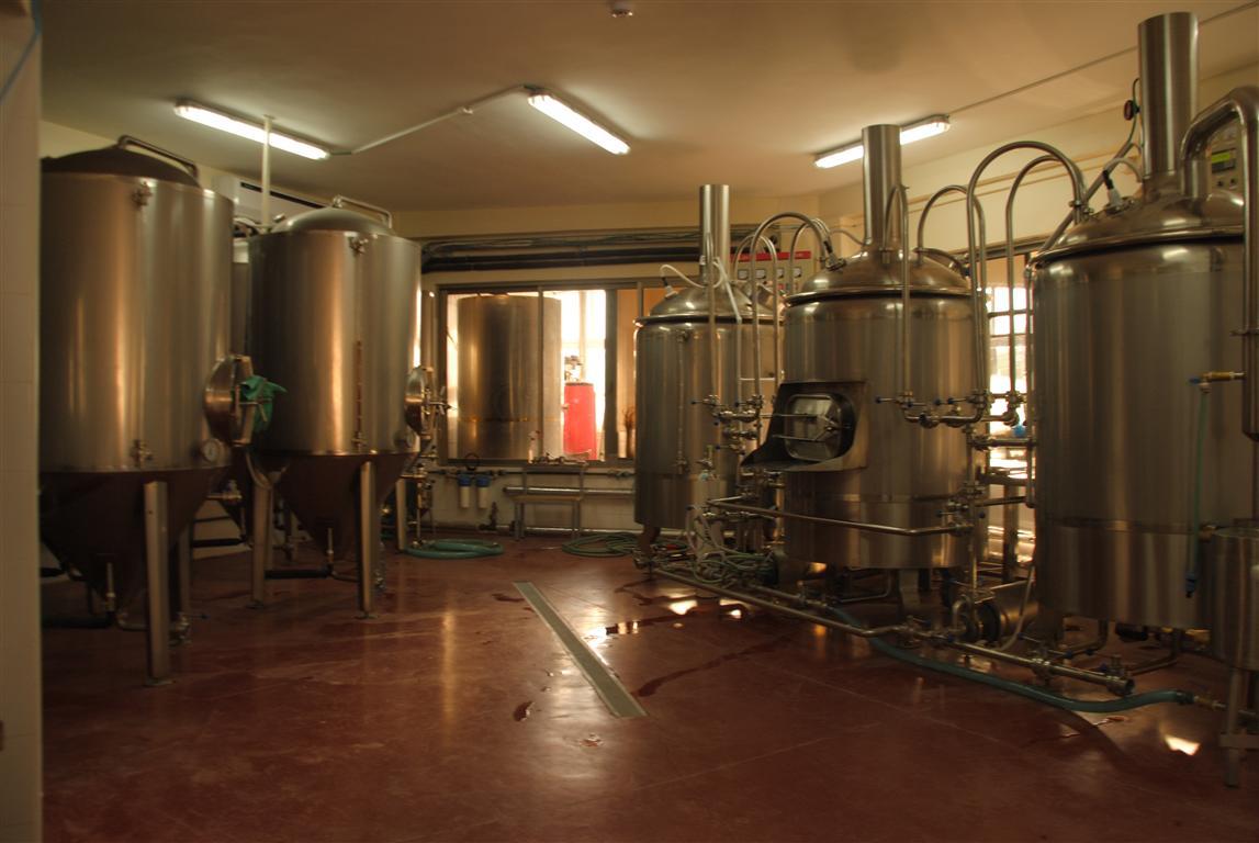 בירה (צילום: יח