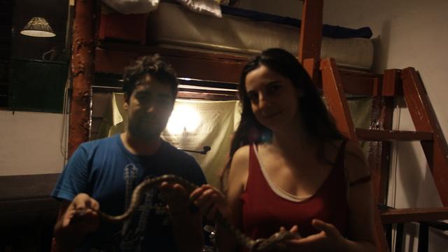 Змея, пойманная в квартире Эфрат Кольберг