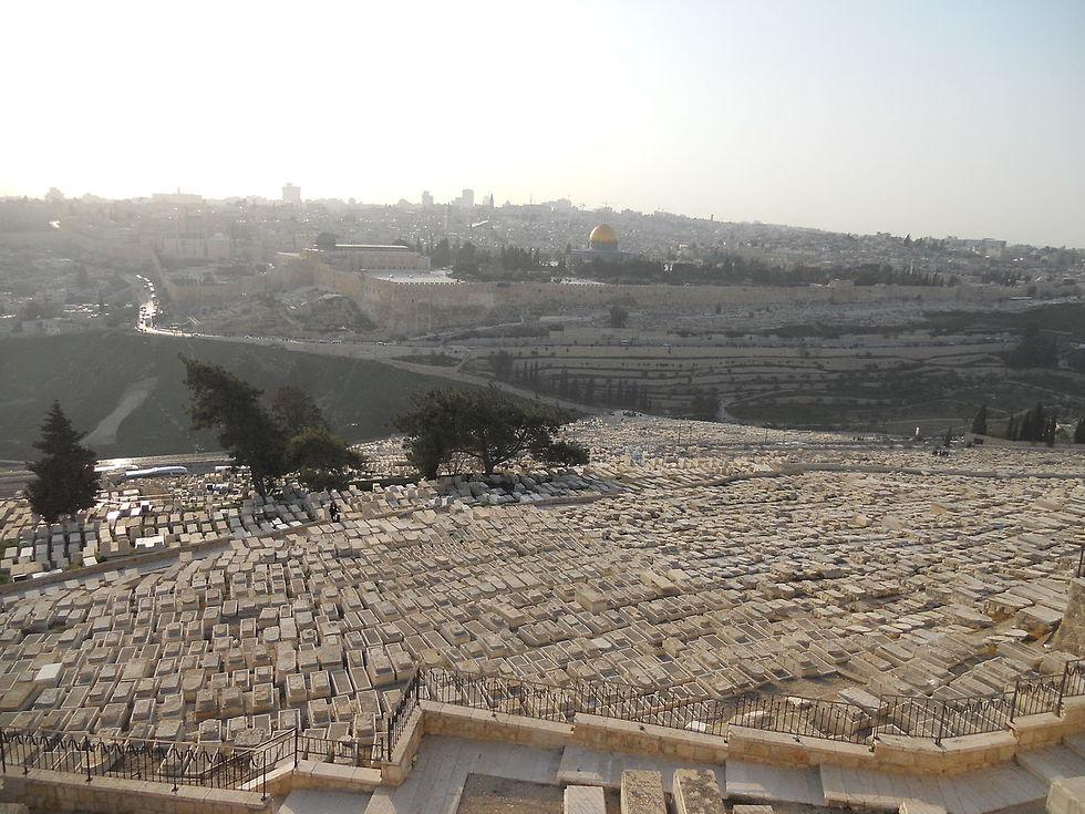 החלקה היהודית בהר הזיתים (צילום: ציון הלוי)