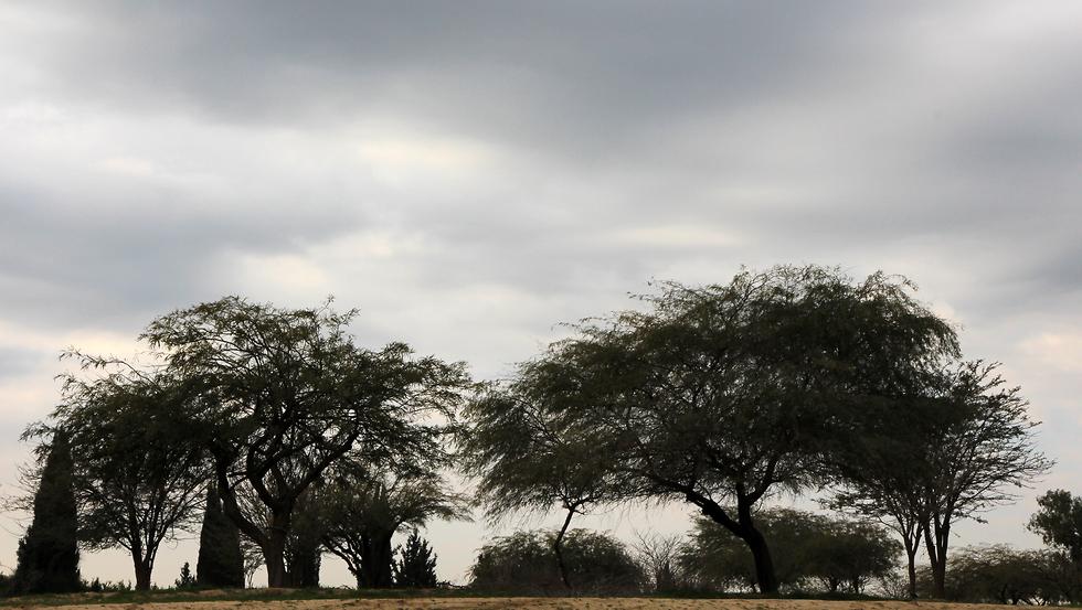 פארק שרשרת נחל גרר (צילום: יעקב שקולניק)