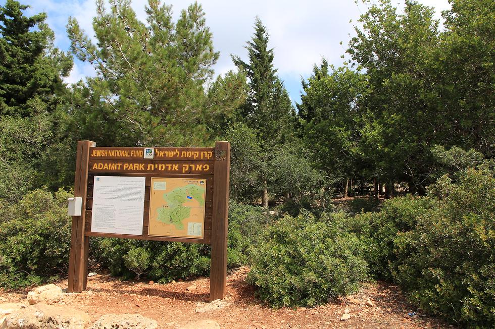 פארק אדמית (צילום: יעקב שקולניק)