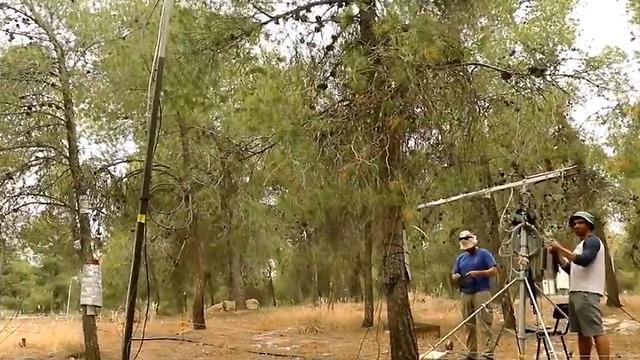 תחנת המחקר של פרופ' יקיר ביער יתיר (צילום: זווית, סוכנות ידיעות למדע ולסביבה)