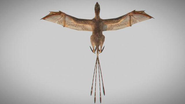 הדמיה של הדינוזאור הקטן (צילום: רויטרס)
