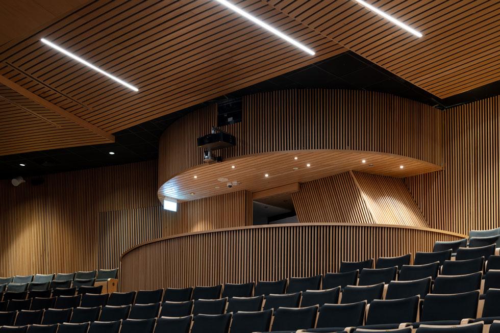 יציעי ישיבה בולטים נועדו לחבר ככל האפשר את הצופים להתרחשות על הבמה (צילום: גדעון לוין)