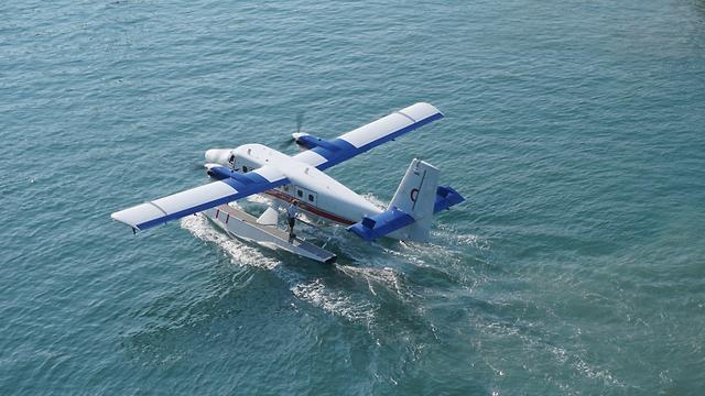 אילוס אילוסטרציה מטוס מטוסי ים (צילום: shutterstock)