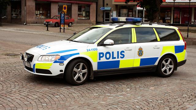 ניידת משטרה שבדיה (צילום: shutterstock)