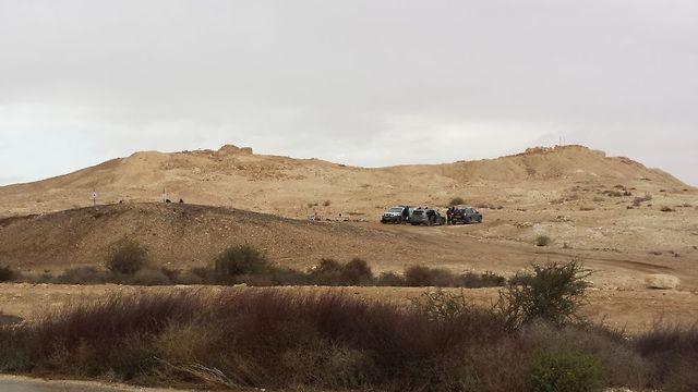 עצמות תנין (צילום: משלחת החפירות ערי הנגב הביזנטיות אוניברסיטת חיפה)