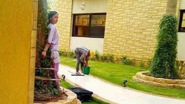 עובדת זרה פיליפינית נקשרה לעץ סעודיה ()