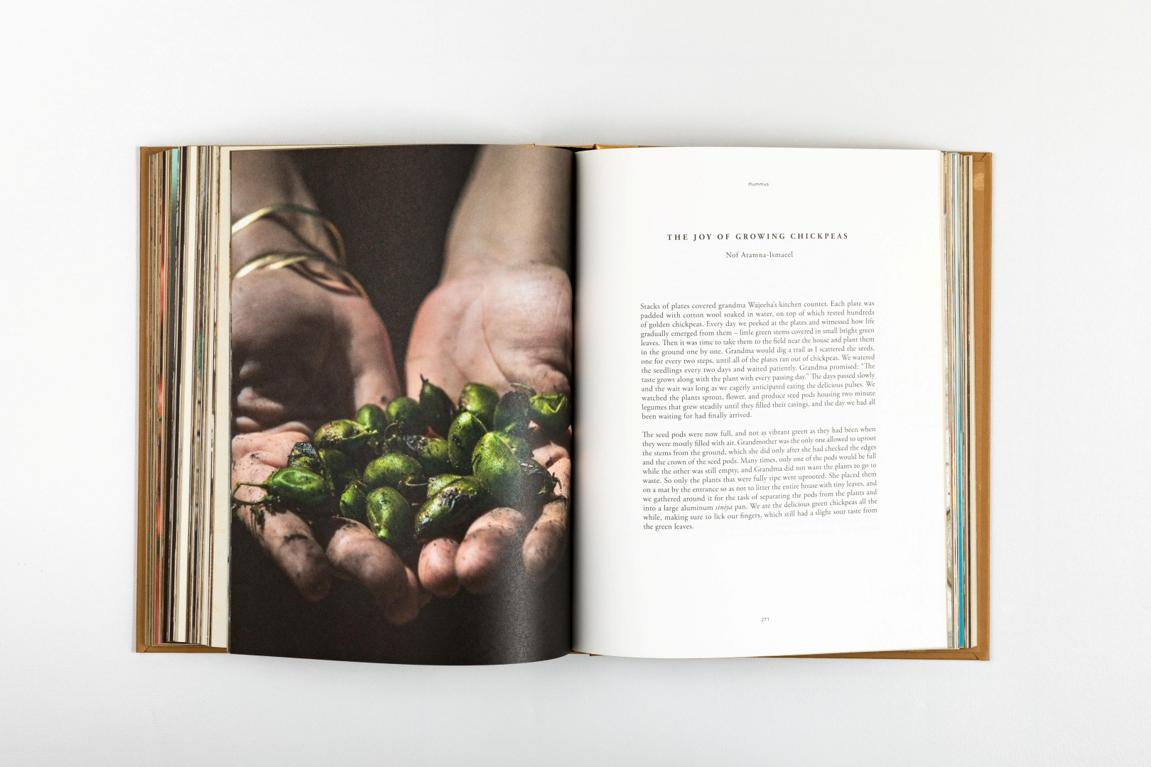 צילומים מתוך ספר החומוס של אריאל רוזנטל (צילום מתוך הספר)