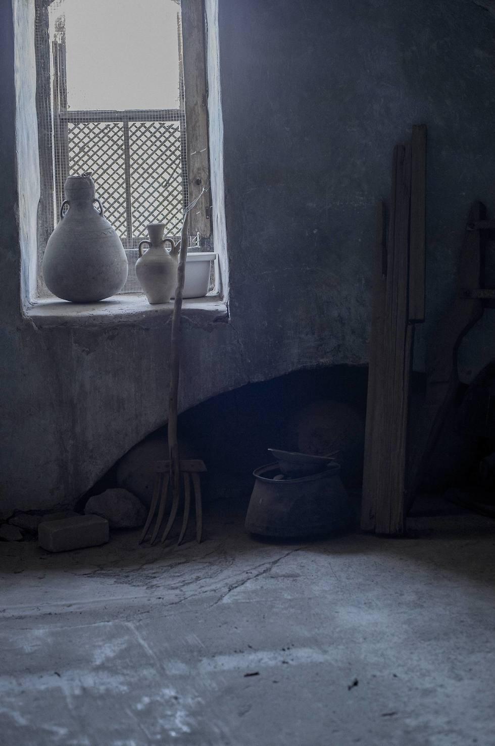 סיור רמדאן בטייבה (צילום: יובל חן)
