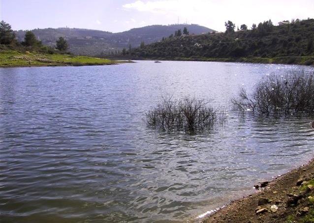 """עמק מוצא (צילום: מנעד תכנון נוף בע""""מ)"""
