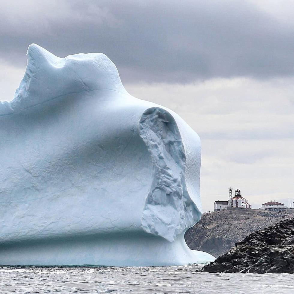 הקרחון במערב קנדה (צילום: מארק גריי)