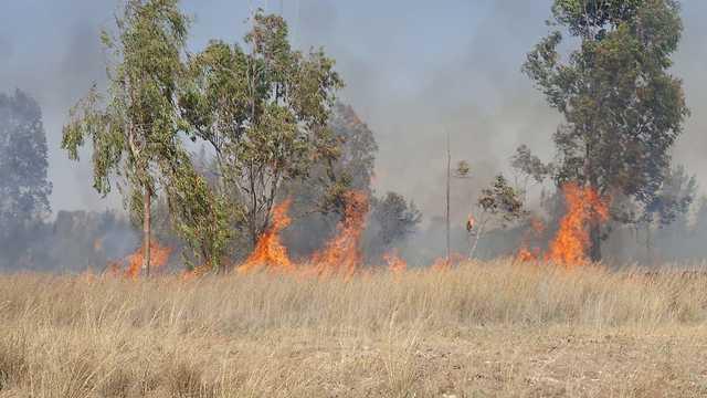 שריפות מבלוני תבערה אשר פרצו במועצה האזורית אשכול (צילום: חדשות 24/7 בפייסבוק)