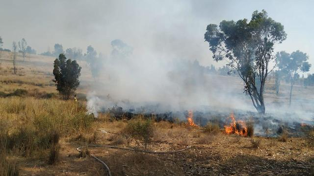 שריפות מבלוני תבערה אשר פרצו במועצה האזורית אשכול (צילום: כיבוי אש)