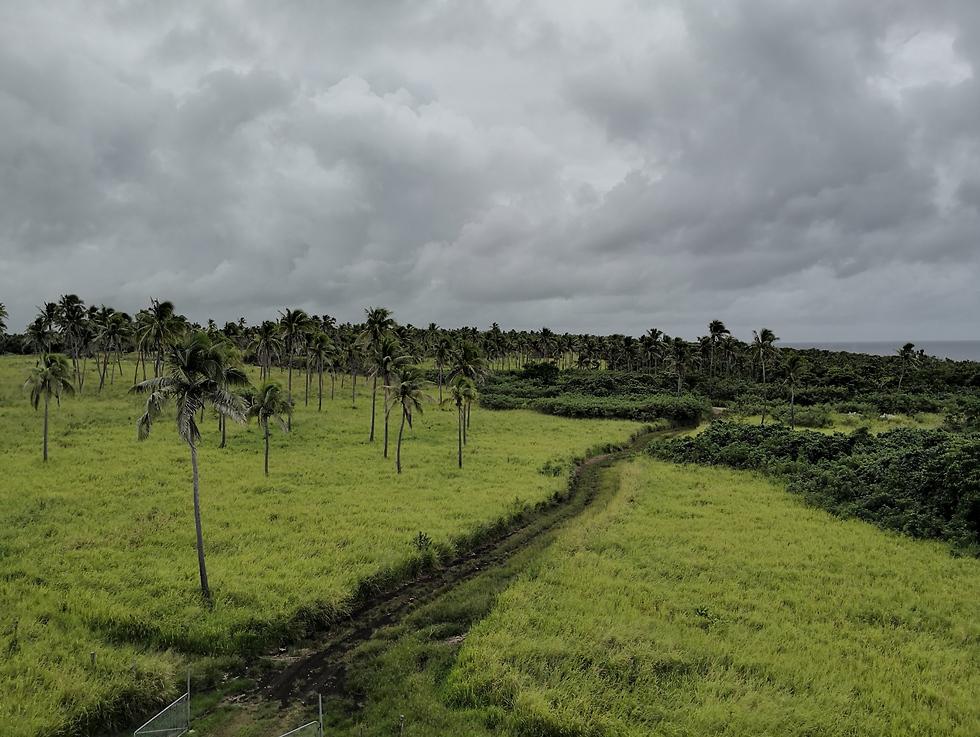 טיול בטונגה (צילום: ניצן אנגלנדר)