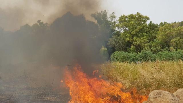 שריפה כפר אוריה  (דוברות כבאות והצלה מחוז ירושלים)