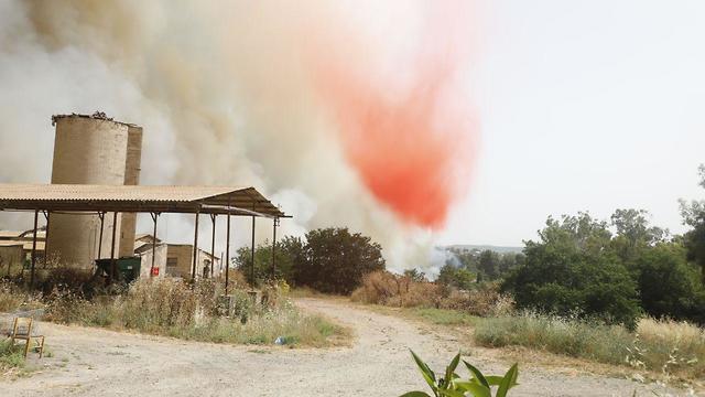 שריפה משתוללת בקיבוץ הראל (צילום: שאול גולן)
