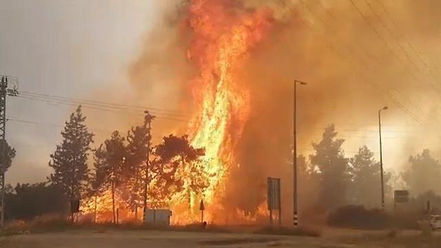 Ben Shemen fire