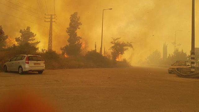 שריפה ליד מבוא מודיעים, קדושי זגלמביה ()
