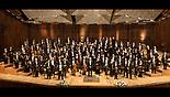 Philharmonic (צילום: עודד אנטמן)